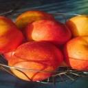 Jablka posilují trávicí systém našeho těla
