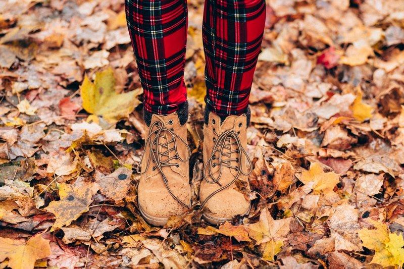 příroda, podzim, listí, zahrada, práce nazahradě