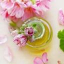 Pleť bez akné, podráždění a vrásek? Používejte za studena lisované oleje!