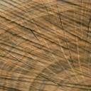 Živý materiál v koupelně - dřevo