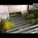 Ananasy - video