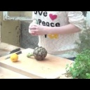 Použití artyčoku v kuchyni - video