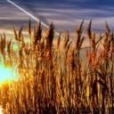 Den na slunci - harmonogram pro zdravé opalování
