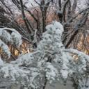 Pleť v zimě - levné rady pro krásu a zdraví