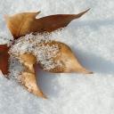 Zima dává pokožce zabrat - oblékněte ji a dopřejte kvalitní péči