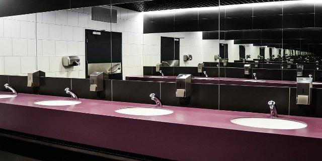 zdraví, toalety, nemoci, bakterie, infekce, hygiena