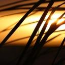 Opalování pleti se sklony k akné - vhodná opalovací kosmetika