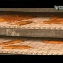 Mražené Ryby - video