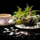 Bílý čaj - nejzdravější čaj na světě
