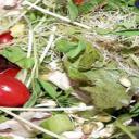 Celer výborně chutná, preventivně působí proti mnoha nemocem včetně rakoviny a má vliv i na potenci
