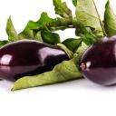 Které bylinky pomáhají regenerovat játra?