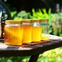 Med přímo od včelaře nenahradí žádné levnější alternativy z dovozu!
