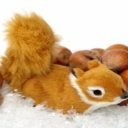 Ořechy - správná cesta ke zdraví