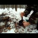 Přírodní léčiva III - video