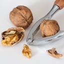Vlašské ořechy chrání srdce, mírní záněty a rozvíjí mozkovou činnost