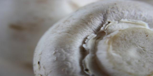 Žampiony - vitaminy, minerály aomega mastné kyseliny vchutném obalu
