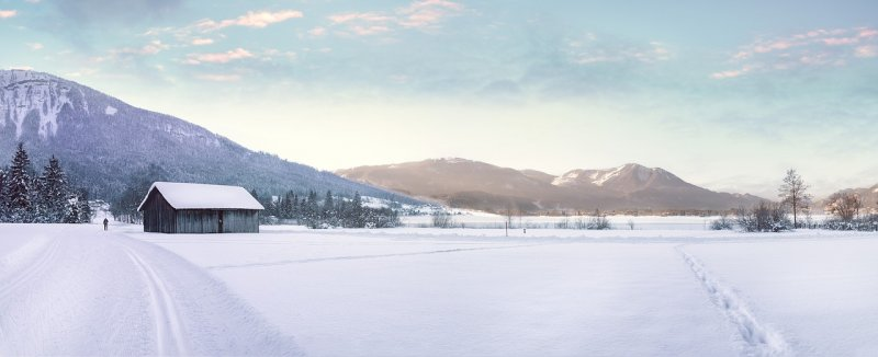 běžkování, sport, zima, sníh, lyže, běžky