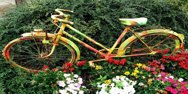 sport, cvičení, cyklistika, zdraví, design