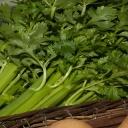 Správné skladování zeleniny zamezí zdravotním potížím