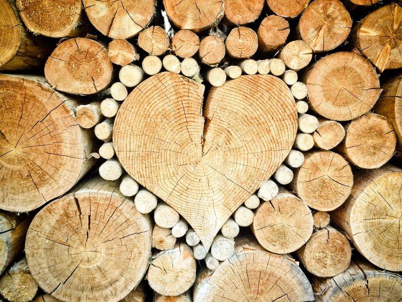 topení, dřevo, zdraví, ekologie