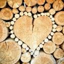 Topení dřevem je ekologické, zdravé a magické