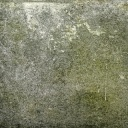Plíseň na zdi účinně odstraní nejnovější biologické prostředky