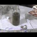 Domácí výroba levandulového oleje - video