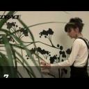 Nalepte si samolepící dekoraci na zeď - video