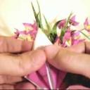 Jak vytvořit papírovou květinovou dekoraci - video