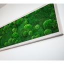 Mechový obraz vlastní výroby originálně vyzdobí každý interiér