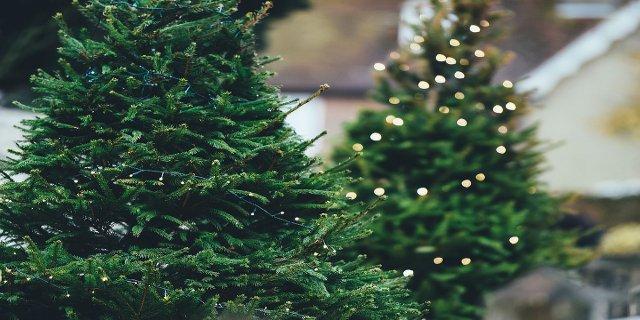 Vánoce, stromeček, zdobení stromku, ozdoby