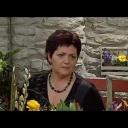 Aranžování květin a jejich výsadba - video