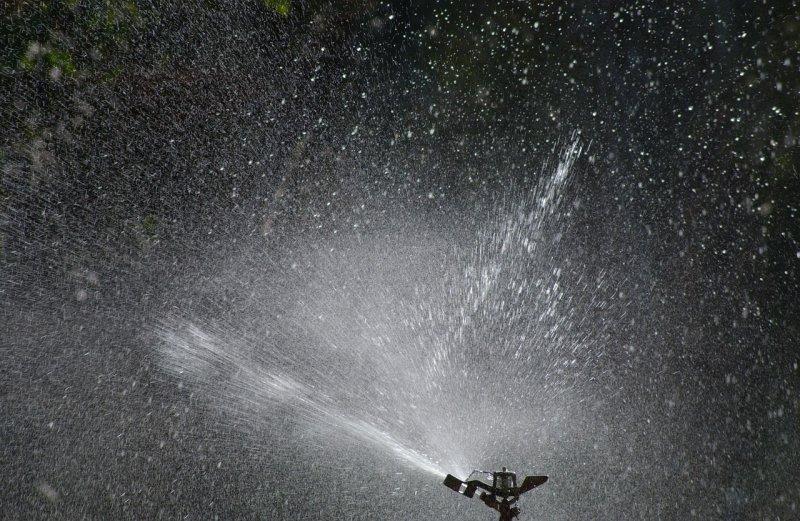 zahrada, zavlažování, automatický zavlažovací systém, voda, zeleň arostliny