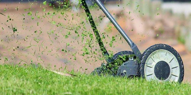 zahrada, sekačka, kosa, elektromotory, údržba