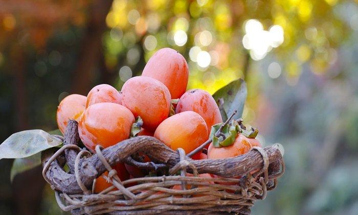 hurmikaki, ovoce, vitaminy, zahrádka
