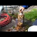 Jak na pěstování hub! - video