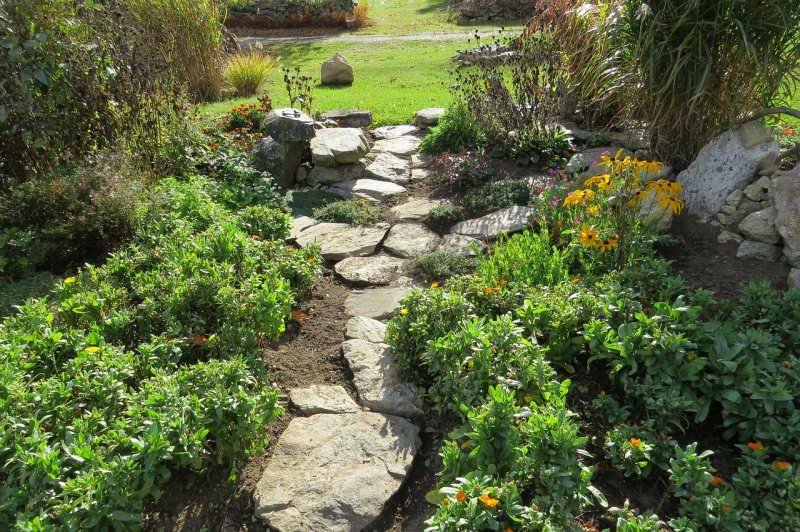 záhony, bydlení, zahrada, zeleň arostliny