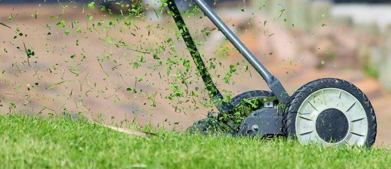 zahrada, tráva, sekačka natrávu, ekologie, robot