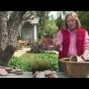 Vytvořte si okrasnou zahradní fontánu - video