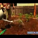 Správné zalévání zeleninového záhonu - video