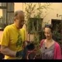 Nové odrůdy maliníku - video