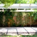 Pergoly, zahradní domky a další drobná architektura ze dřeva