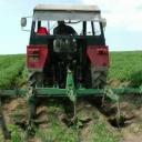 Pěstování brambor - video