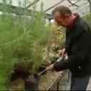 Přidej se - Pěstování hub - video