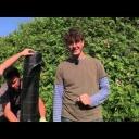 Prostor pod živým plotem - video