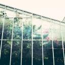 Skleník - praktická ozdoba do každé zahrady