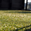 Zahrada bez úporného zalévání, a přesto zelená?