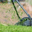 Zakládáte trávník? Zapomeňte na trávní směs a vydejte se do trávní školky!