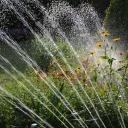 Zalévání zahrady pomocí automatických zavlažovačů