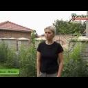 Zázračný živý plot - video
